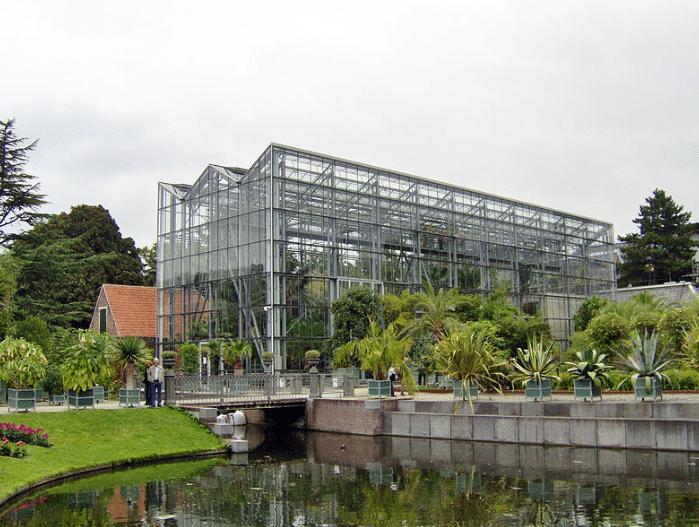 راهنمای سفر به هلند- باغ گیاه شناسی هورتس