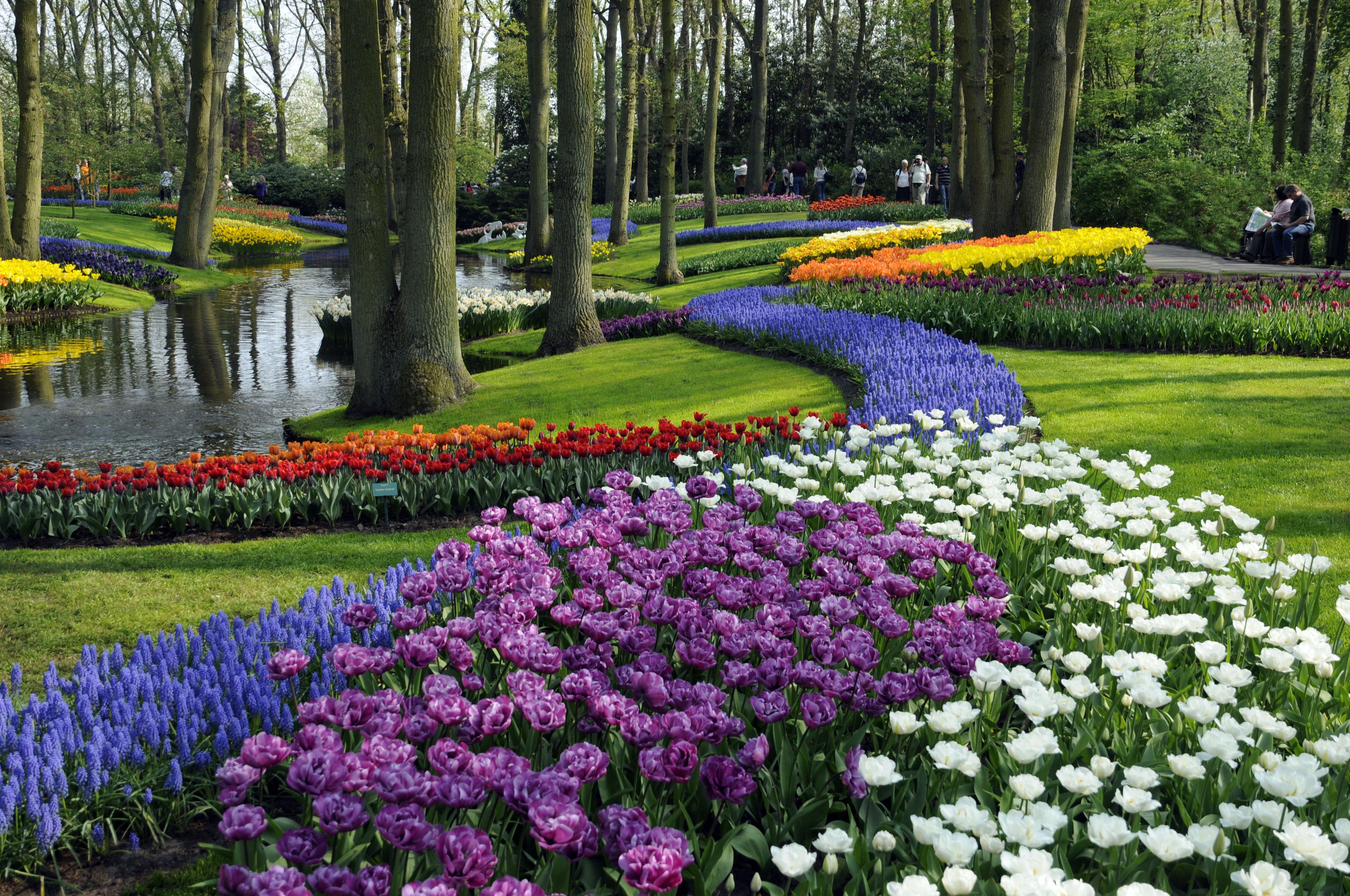 keukenhof – the garden of europe - netherlands tourism