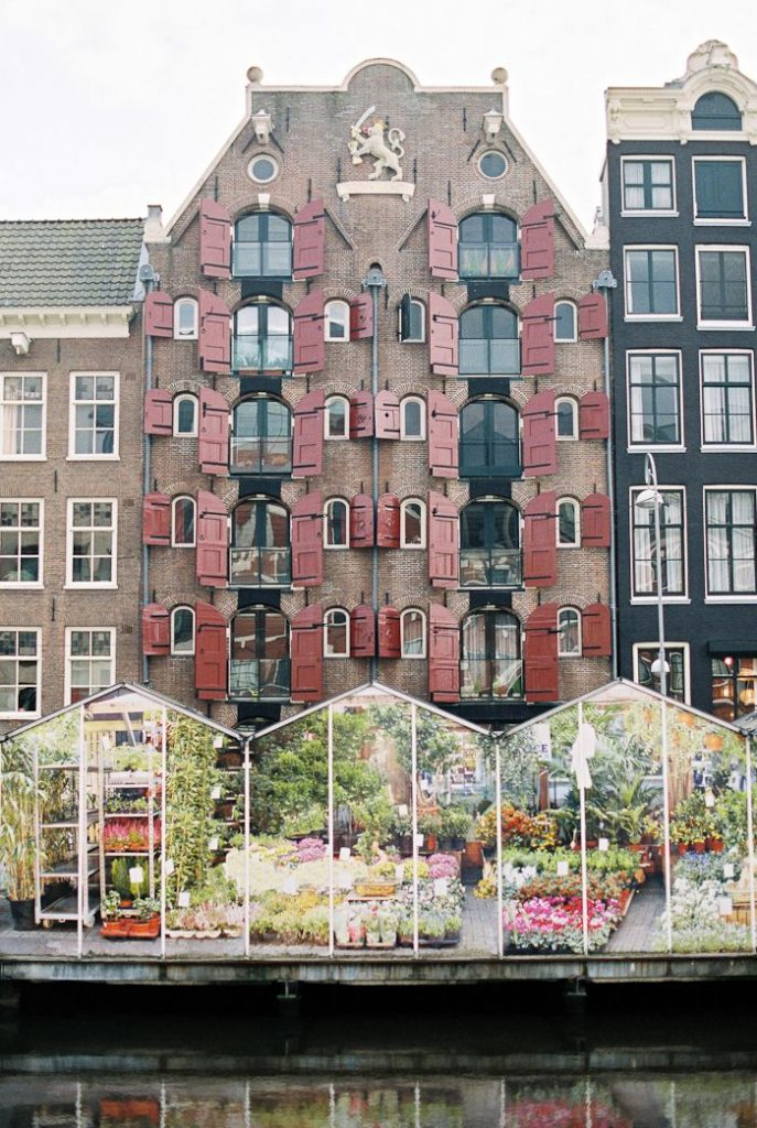 Amsterdam - More Flower Market