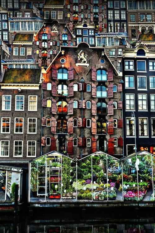 Amsterdam - The Flower Market
